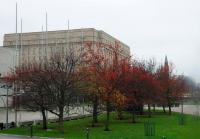 Parlamentul îndulcit de culori