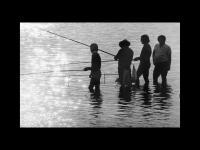 Iulius Ștefănescu-The Fisherman