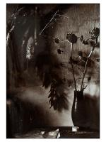Robert Moser-Natură statică