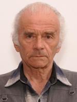Victor Boldâr